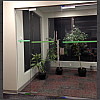 glass swinging door