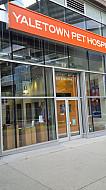 Commercial Aluminum Swing Door for Pet Hospital