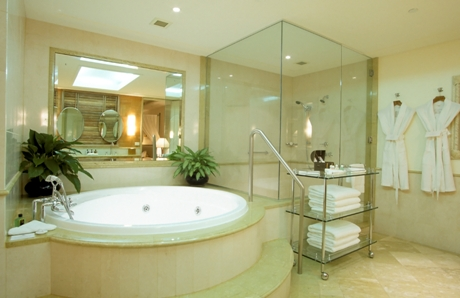 frameless shower doors and mirrors